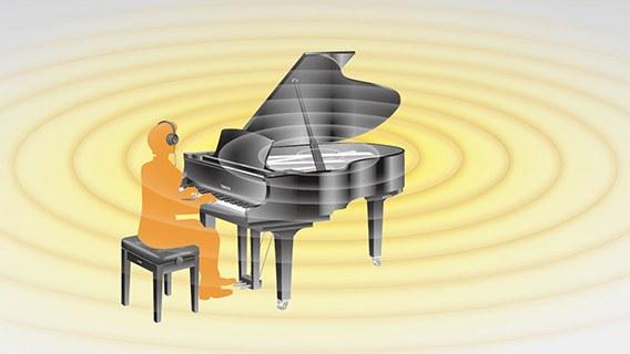 silent_pianoforti4